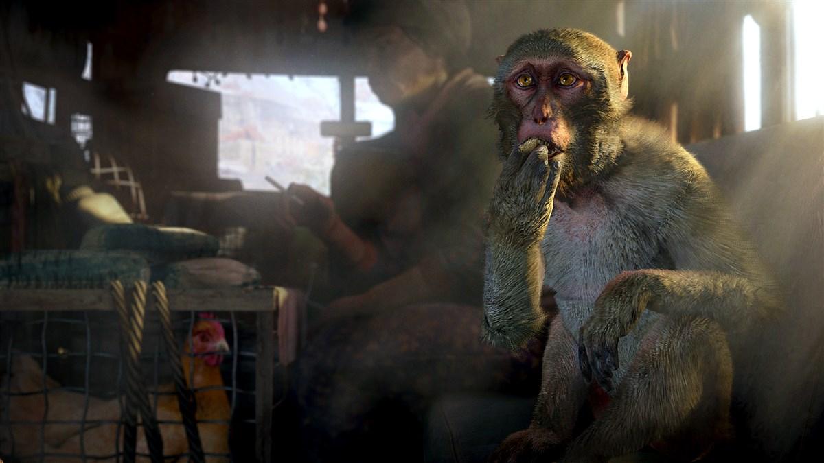Far Cry 4 ��� PS3 �������